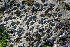 Rock with holes Royalty Free Stock Photos