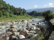 Rock inside river