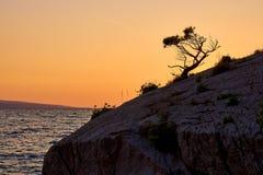 Rock island at golden sunset in Brela Stock Image