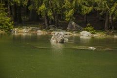 Rock lake. Rock into the lake in mountains Stock Photos