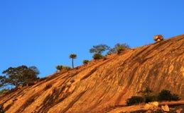 Rock landsape with natural vegetation. Large rock lanscape with natural vegetation and clear blue sky Royalty Free Stock Images