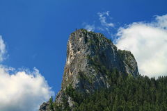 Rock landscape in Bicaz canyon Royalty Free Stock Photos