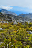 Rock and Landscape on Top of Table Mountain. Cape Town, South Africa Royalty Free Stock Photography