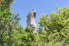 Rock and lemon-tree in Archaeological Park at Syracusa, Sicily Stock Image