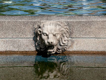 Rock lion on pool Royalty Free Stock Photography