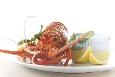 Rock Lobster with Lemon Butter Stock Photos