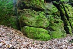Rock med moss Royaltyfria Bilder