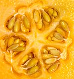 Rock Melon. A close up of the center of a ripe rock melon, also known as a cantaloup stock photography
