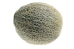 Rock Melon Royalty Free Stock Photography