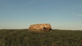 Rock in a middle of grassy field, in front of blue sky. Render. Royalty Free Stock Photos