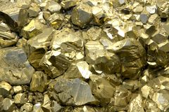 Rock with mineral crystals or gold just found by Geologist Royalty Free Stock Image