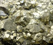 Rock with mineral PYRITE crystals or gold just found by Geologis Stock Photo