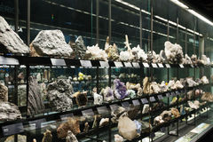 Rock and minerals at Museu Blau Stock Photos