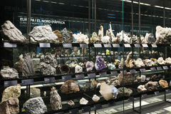 Rock and minerals at  Planets vida exhibition. Museu Blau Stock Image