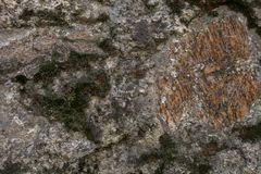 Rock and moss texture and background. Mossy stone background. Abstract texture and background for designers. Mossy stone texture. Closeup view of moss and Royalty Free Stock Image