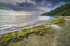 Rock mosses at Lombok Beach, Indonesia. Natural green moss at beach rock with cloudy sunlight at Lombok beach, Indonesia Stock Photos