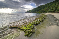 Rock mosses at Lombok Beach, Indonesia. Natural green moss at beach rock with cloudy sunlight at Lombok beach, Indonesia Royalty Free Stock Photo