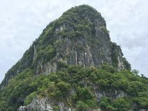 Rock mountain full covered by green trees. Rock mountain covered by the green plants and trees cloudy sky Royalty Free Stock Image