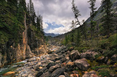 The rock in the mountain river canyon Stock Images