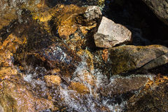 Rock Mountain river environment Royalty Free Stock Photography