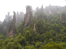 Rock mountain in Zhangjiajie. Stock Photos