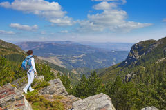 On a rock in the National Park in Portugal Royalty Free Stock Images