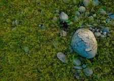 Rock on the natural grass wallpaper Royalty Free Stock Image