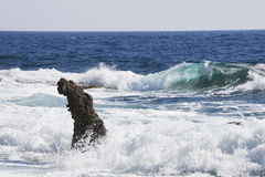 Rock near Paphos, Cyprus. Turquoise wave Royalty Free Stock Photos