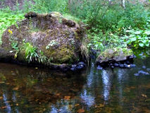 A rock near the river with clear water Stock Photography