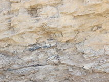 Rock in Negev desert closeup Royalty Free Stock Images
