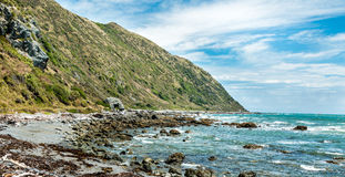 Rock New Zealand Coastline Stock Photography
