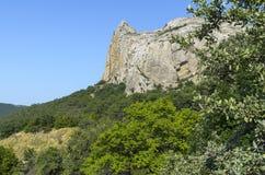 Rock omgav vid grönska Krim Royaltyfri Bild