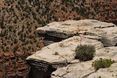 Rock Outcrop. A rock outcrop at the Grand Canyon in Arizona royalty free stock photo