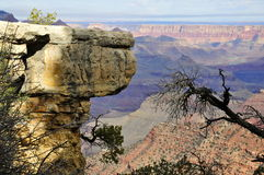 Rock outcrop at Grand Canyon's South Rim Stock Images