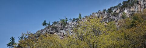 Rock outcrop in Monongahela National Forrest in West Virginia, USA