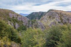 Rock outcrop in native bush Stock Photo