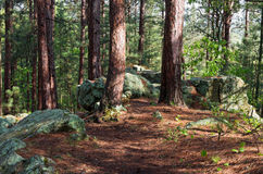 Free Rock Outcrop On Woodland Trail Stock Photo - 94030770