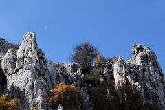 Rock outcroppings in autumn, with the moon. A composition with some rock outcroppings surrounded by the branches and leaves of some beech trees, in autumn Stock Photography