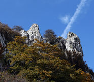 Rock outcroppings in autumn, sunny day. A composition with some rock outcroppings surrounded by the branches and leaves of some beech trees, in autumn, square Royalty Free Stock Photography