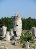 Rock in Pabiti Kamani Stock Image