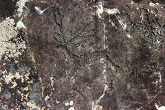Rock painting. The image of an animal on the rock Stock Photos