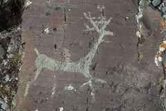 Rock paintings Royalty Free Stock Photos