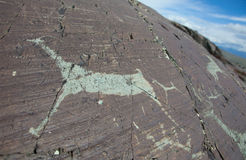 Rock paintings. From the Bronze Age Royalty Free Stock Photo