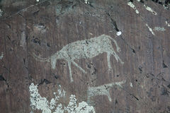 Rock paintings. From the Bronze Age Stock Photo