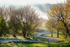 Rock path under sunrise, cloud of sea and Yushan mounatin under bright sky in Alishan(Ali mountain) Royalty Free Stock Photo