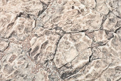 Rock pattern Stock Photography