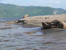 Rock in Pembroke. Canada, north America. Rock in Pembroke. Canada north America Royalty Free Stock Photography