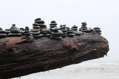 Rock Piles on a Driftwood Log. Rocks stacked and piled precariously on a log of driftwood at the beach Stock Photos