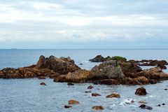 Rock and pine of Minami Izu Ose seashore. A pine tree growing on the rock of the Minami Izu Sea is unusual stock photos
