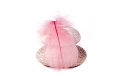 Rock and pink feather. On white background royalty free stock image